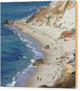 A Walk Along Aquinnah Beach Wood Print