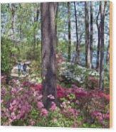 A Walk Among The Azaleas Wood Print