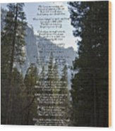 A Walk Among The Trees  Wood Print