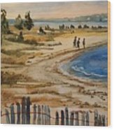 A Walk By The Seashore Wood Print
