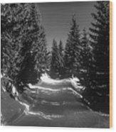 A Walk In Bavaria 2 Wood Print