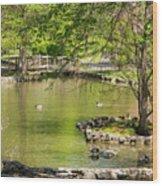 A Walk In City Park Wood Print