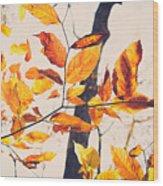 A Walk In Fall Wood Print