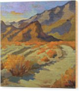 A Walk In La Quinta Cove Wood Print