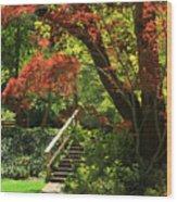 A Walk In Lithia Park Wood Print