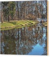 A Walk In The Park Lazienki Warsaw Wood Print