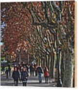 A Walk In The Park - Valencia Wood Print