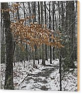 A Walk In The Snow Quantico National Cemetery Wood Print