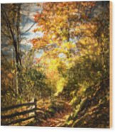 The Lighted Path Wood Print