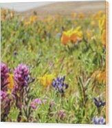 A Walk Though The Poppy Fields Wood Print