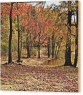 A Walk Through Autumn  Wood Print