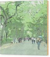 A Walk Through Central Park Wood Print