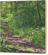 A Walk Through The Bluebells Wood Print
