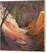 A Walk Through The Canyon Wood Print