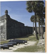 A Wall Of The Castle At San Marcos Wood Print