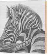 A Watchful Eye Wood Print