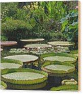 A Water Garden Wood Print