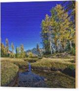 A Western Autumn Wood Print