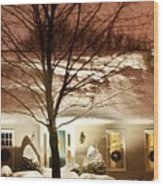 A White House Wood Print