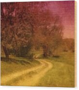 A Winding Road - Bayonet Farm Wood Print