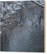 A Winter Swim Wood Print