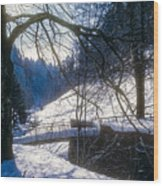 A Winter Walk In The Black Forest Wood Print