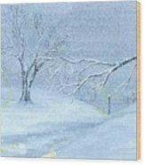 A Winter Walk... Wood Print by Robert Meszaros