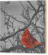 A Winter Wonder Wood Print