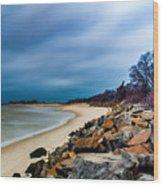 A Winter's Beach Wood Print