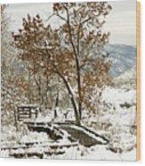 A Winter's Boardwalk Wood Print