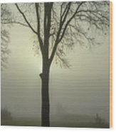 A Winter's Day In The Fog Wood Print
