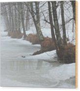 A Winter's Scene Wood Print
