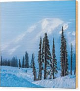 A Wintry Day On Mt Rainier Wood Print