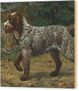 A Wire-haired Pointing Griffon Holds Wood Print