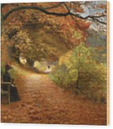 A Wooded Path In Autumn Wood Print