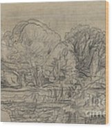 A Woodland Pond Wood Print