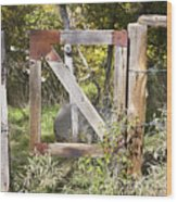 A Woodsy Gate Wood Print
