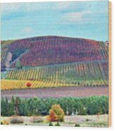 A Yamhill Co. Vineyard Wood Print by Margaret Hood