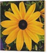 A Yellow Beauty Wood Print
