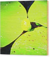 A Yellow Bud Of Waterlily Wood Print