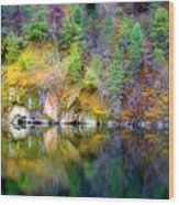 A Yellow Lake Calm Wood Print