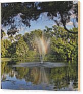 A Zen Oasis By H H Photography Of Florida Wood Print