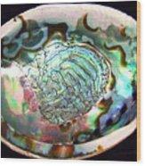 Abalone Seashell Wood Print