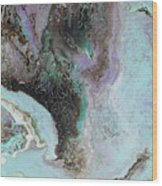 Abalone Wood Print