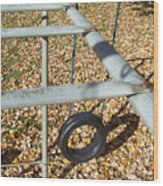 Abandon Playground Wood Print
