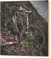 Abandoned Bicycle Wood Print