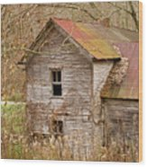 Abandoned Farmhouse In Kentucky Wood Print