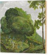 Abandoned Garden Wood Print