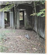 Abandoned House Wood Print by Terry  Wiley