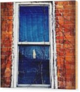 Abandoned House Window With Vines Wood Print
